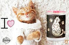 Scentsy I Love Cats warmer dianadelarosa.scentsy.us