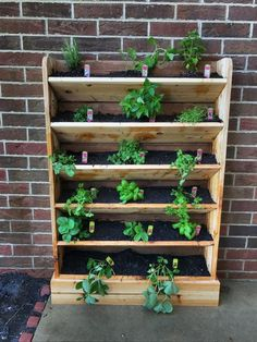 Stunning Vertical Garden for Wall Decor Ideas Do you have a blank wall? the best way to that is to create a vertical garden wall inside your home. A vertical garden wall, also called… Continue Reading → Vertical Garden Design, Vertical Planter, Herb Planters, Wood Planters, Indoor Planters, Planter Boxes, Recycled Planters, Vertical Herb Gardens, Tiered Planter