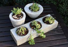 Betonschalen als Blumentopf – mit Liebe von uns per Hand gefertigt! Großer Block mit drei Schalen 15,90€ – Töpfe in unterschiedlichen Ausführungen 9,90€ – Preise ohne Bepflanzung!