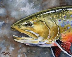 BROOK TROUT Fly Fishing Art Print Signed by Watercolor Artist DJ Rogers by k9artgallery on Etsy https://www.etsy.com/listing/123497817/brook-trout-fly-fishing-art-print-signed
