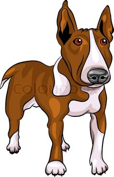 Stock vector ✓ 14 M images ✓ High quality images for web & print | Vector cartoon Bull Terrier Dog breed