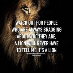 Don't make me roar just so you can see who I am. #hashtag #inspiration #Morning Now Quotes, Great Quotes, Quotes To Live By, Its Me Quotes, Never Quotes, Music Quotes, Quotable Quotes, Wisdom Quotes, Life Quotes