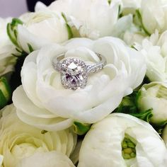 Perhaps the prettiest Tacori engagement ring?  D flawless radiant cut diamond!