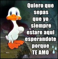Imagenes de Amor con Frases Chidas y Nuevas Para Enamorar! Love My Man, Love S, Real Life Quotes, Love Quotes, Motivational Phrases, Inspirational Quotes, Ex Amor, Good Morning Love, Spanish Quotes