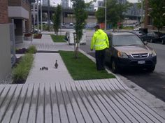 VPD officer escorting mama and ducklings to False Creek.ly - image uploaded by Police Department Olympic Village, Have You Seen, Kawaii Cute, Police Officer, Pet Birds, Vancouver, The Neighbourhood, Ducks, Pets