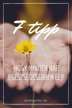 Életmódváltás - 7 egyszerű tipp, hogy minden nap egészségesebben élj Nap, Minden