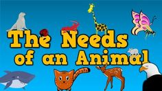 The Needs of an Animal   (song for kids about 4 things animals need to survive) - YouTube