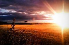 Wspieram.to Skazaniec Samotności, Czyli W Pogoni Za Szczęściem Celestial, Sunset, Outdoor, Outdoors, Sunsets, Outdoor Games, The Great Outdoors, The Sunset