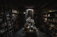 An abandoned veterinary school basement filled with jars of different kinds of animal remains floating in formaldehyde.