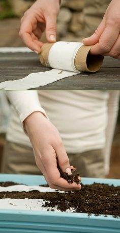 Gardening tips : Make seed tape out of toilet paper | My Favorite Things