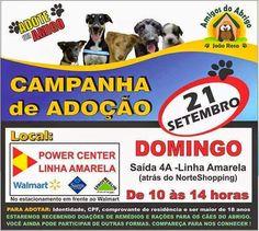 Bonde da Bardot: RJ: ADOÇÃO DE ANIMAIS NA SAÍDA 4A LINHA AMARELA (21/09)