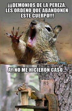 Luché pero no salieron #ImagenDelDia - Cachicha.com
