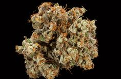 BEST COLORADO HYBRID FLOWER  1st Place - Kong - Allgreens