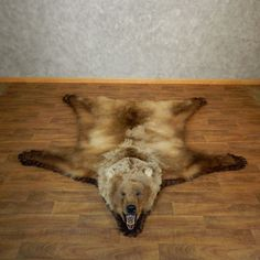 Grizzly Bear Taxidermy Rug Mount For 18209 The