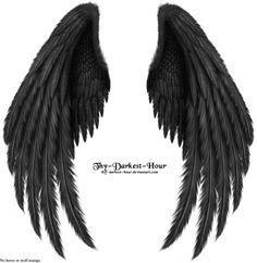 Winged Fantasy V.2 - Black by =Thy-Darkest-Hour on deviantART