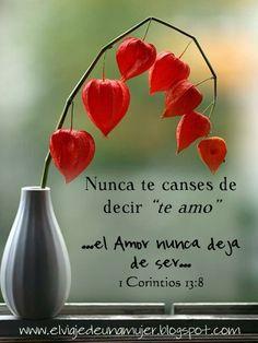 1 corintios 13:8