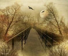 Kauf 'Magie des Leben ' von Raven Art auf Leinwand, Alu-Dibond, (gerahmten) Postern und Xpozer.