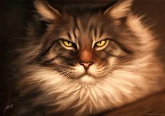 Maine Coon by Lhuin.deviantart.com on @DeviantArt