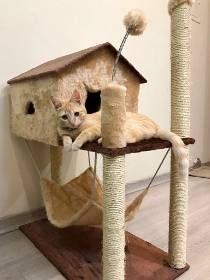 Arranhador Urso De Ferro - R$ 890,00 Cat Hotel, Cat House Diy, Diy Cat Tree, Cat Towers, Cat Playground, Cat Scratcher, Cat Condo, Cat Room, Pet Furniture