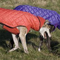 hooded waterproof hoods worn folded back