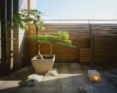 A tiny balcony in an apartment block in Tokyo has been transformed by Takeshi Nagasaki into a miniature garden. White granite arranged in a checkerboard pattern, with the rough-hewn blocks alluding to passing clouds. A potted Japanese maple (Acer palmatum) has been trained to follow the horizontal and vertical lines of the bamboo fence (Arundinaria japonica).