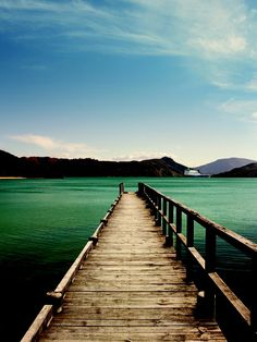 The sheltered waterways of the Marlborough Sounds are home to many great fishing spots. Have a go at on-shore fishing or take one of the many fishing cruises available.