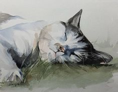Cat Painting, Cat Art, Cats, Watercolor Painting, Sleeping Cat #CatWatercolor