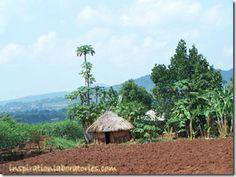 Exploring Geography: Kenya