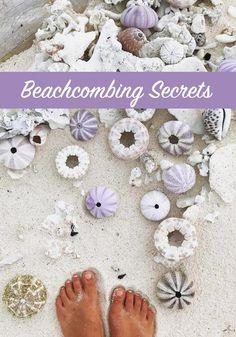 Beachcombing Secrets, How to find beautiful shells Mermaid Nursery, Baby Mermaid, Mermaid History, Seashell Painting, Beautiful Beaches, Sea Shells, Postage Stamps, Mermaids, Banks
