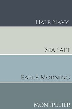 bedroom paint colors Sherwin Williams Sea Salt – Claire Jefford How Cellulose In Sherwin Williams Sea Salt, Sherwin Williams Navy, Sea Salt Paint, Sw Sea Salt, Decoration Palette, Paint Color Schemes, Exterior Paint Schemes, Paint Color Palettes, Paint Colors For Home