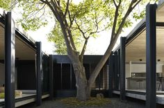 Elm & Willow House - Architects EAT