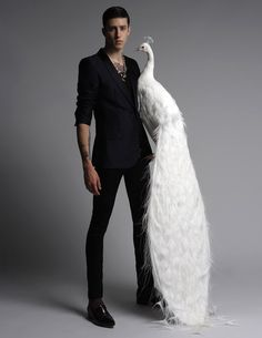 Bird Brain | Miles Langford in 'Like' by Christos Karantzolas for Fashionisto Exclusive