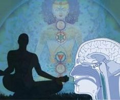 numerous studies have indicated the many physiological benefits of meditation, and the latest one comes from Harvard University. an eight week study conducted by Harvard researchers at Massachusetts General Hospital (MGH) determined that meditation litera Meditation Benefits, Daily Meditation, Mindfulness Meditation, Hospital General, Massachusetts General Hospital, Chakras, Yoga Fitness, Negative Emotions, Your Brain