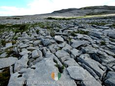 Last weekend, I hiked part of the Burren Trail with my friend, walking buddy and guide, Jenni. The Burren is an expanse of karst landscape located in Co Clare, stretching some 250 km between the vi…