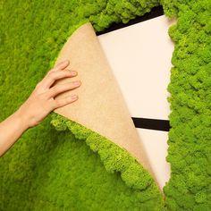 https://www.mineraltiles.com/living-wall-moss-tile-green-16x24/