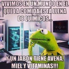 "@chikamk3's photo: ""#awiwi #argentina #aguascalientes #bajacalifornia #colima #chile #chihuahua #durango #guerrero #jalisco #hidalgo #puebla #paraguay #nayarit #california #sinaloa #sonora #ranarenememes #ranarene #mexico #michoacan #monterrey #queretaro #veracruz #tijuana #mexicansbelike"""