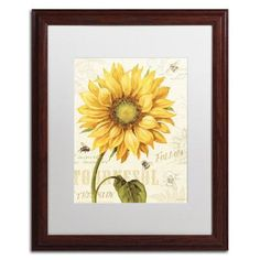 """Trademark Art """"Under the Sun I"""" by Lisa Audit Framed Painting Print Size:"""