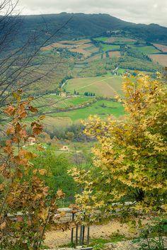 Autumn in Chianti