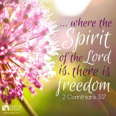 Now the Lord is the Spirit, and where the Spirit of the Lord is, there is liberty. 2 Corinthians 3:17