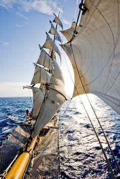 Barque Europa. http://www.barkeuropa.com/