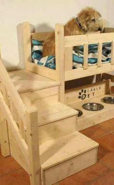 12 casas para perros que te dejarán de boca abierta - Hogar Total
