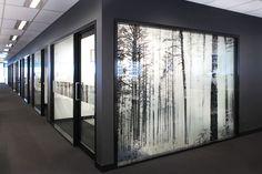 Full Height Trees, BDO Brisbane Glazing Graphics, Environmental Art.