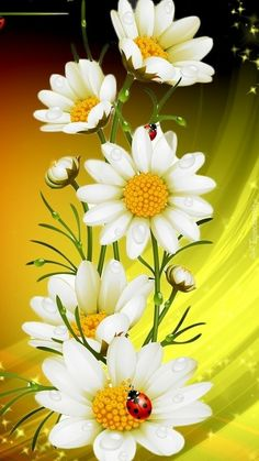 de flores Flowers with a lady bug Flowers with a lady bug Beautiful Flowers Wallpapers, Beautiful Rose Flowers, Beautiful Nature Wallpaper, Colorful Wallpaper, Beautiful Landscapes, Illustration Blume, Daisy Painting, Sunflower Wallpaper, Flower Phone Wallpaper