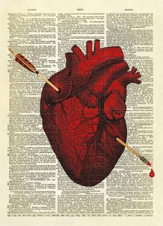 Arrow Pierced Heart Dictionary Art Print No. 58 sold by Altered Artichoke. Shop more products from Altered Artichoke on Storenvy, the home of independent small businesses all over the world. Heart Illustration, Antique Illustration, Medical Illustration, Broken Heart Art, Heart Piercing, Or Mat, Dictionary Art, Human Heart, Dibujo