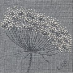Cow Parsley on Linen IV