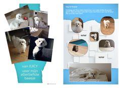 Krant over je huisdier - hond - krant maken