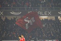A Minha Chama: V. Guimarães 0 SL Benfica 1 (CN: 18/19 - 18J) Twitter, 1, Club, The World