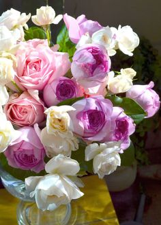Scented roses... Tambuzi garden Roses cut Flower collection. Order online @ http://www.parfumflowercompany.com