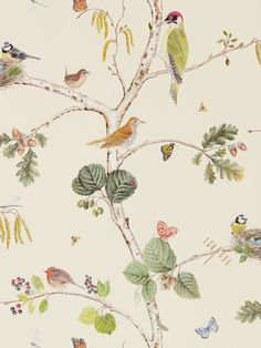 Woodland Chorus Cream wallpaper by Sanderson. True until this year birds were so not me now I have found this new attraction towards them. Totally smitten. I especially love this paper roll. Lovely colors not overdone, but just perfect detailing. #newattraction