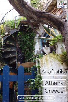 Anafiotika is a 'hidden' place below the Acropolis in Athens, Greece.  You're lucky to find it and wander around it's tiny streets, just like a Greek island. #VisitGreece #Greece #Athens #Acropolis